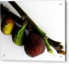 Three Stages Till Fully Ripe Acrylic Print by Tina M Wenger