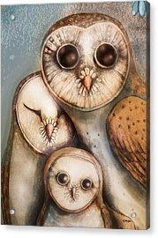 Three Wise Owls Acrylic Print by Karin Taylor