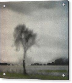 Through A Train Window Number 2 Acrylic Print by Carol Leigh