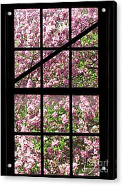 Through An Old Window Acrylic Print by Olivier Le Queinec