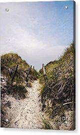 Through The Dunes Acrylic Print by Hannes Cmarits