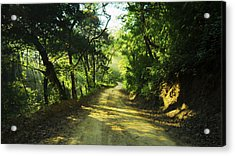Through The Jungle Acrylic Print by Aged Pixel