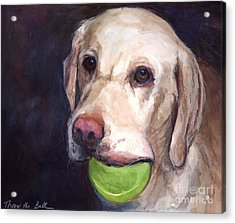 Throw The Ball Acrylic Print by Molly Poole