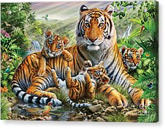 Tiger And Cubs Acrylic Print by Adrian Chesterman