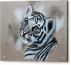 Tiger Cub Acrylic Print by Samantha Howell