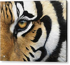 Tiger Eye Acrylic Print by Lucie Bilodeau