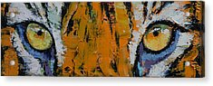 Tiger Eyes Acrylic Print by Michael Creese