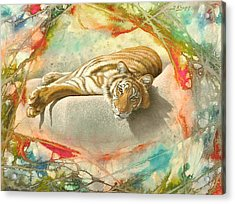 Tiger Laying In Abstract Acrylic Print by Paul Krapf