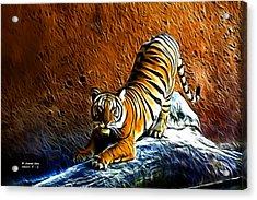 Tiger Pounce -  Fractal - S Acrylic Print by James Ahn