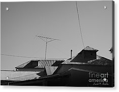 Tin Rooftops Chimayo New Mexico Acrylic Print by David Gordon