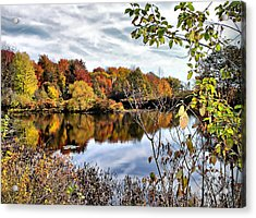 Tinkers Creek Acrylic Print by Monnie Ryan
