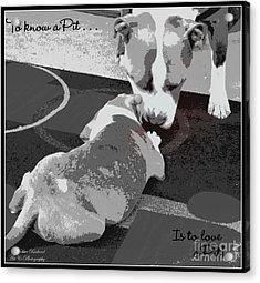 To Know A Pit Is To Love Acrylic Print by Bobbee Rickard