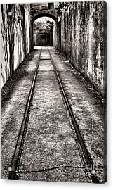 To The Nightmare Acrylic Print by Olivier Le Queinec