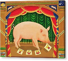 Toby The Learned Pig Acrylic Print by Frances Broomfield
