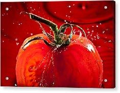 Tomato Freshsplash 2 Acrylic Print by Steve Gadomski