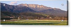 Topa Topa Bluffs Overlooking Ranches Acrylic Print by Panoramic Images