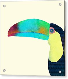 Toucan Acrylic Print by Eric Fan