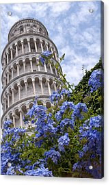 Tower Of Pisa With Blue Flowers Acrylic Print by Melany Sarafis