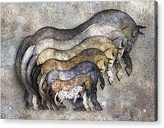 Traditional Horses Acrylic Print by Betsy Knapp