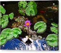 Tranquility - Lotus Flower Koi Pond By Sharon Cummings Acrylic Print by Sharon Cummings