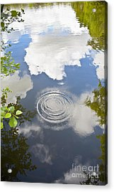 Tranquillity Acrylic Print by Jan Bickerton