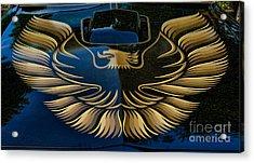 Trans Am Eagle Acrylic Print by Paul Ward