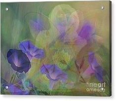 Transformation Acrylic Print by PainterArtist FIN