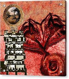Transfusion Into A Wooden Heart Acrylic Print by Maria Jesus Hernandez