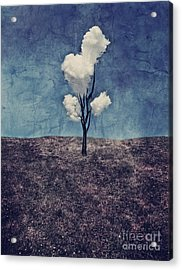 Tree Clouds 01d2 Acrylic Print by Aimelle