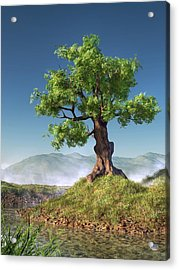 Tree Acrylic Print by Daniel Eskridge
