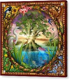 Tree Of Life Acrylic Print by Ciro Marchetti