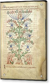 Tree Of Virtues Acrylic Print by British Library
