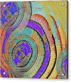 Tree Ring Abstract 3 Acrylic Print by Tony Rubino