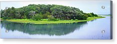 Trees At Rachel Carson Coastal Nature Acrylic Print by Panoramic Images
