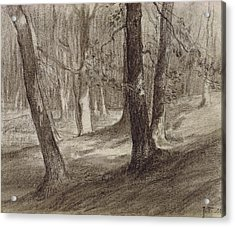 Trees In A Forest Acrylic Print by Jean-Francois Millet