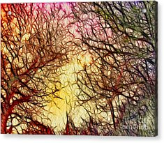 Trees Of The Four Seasons Acrylic Print by Kaye Menner