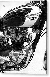 Triumph Bonneville Acrylic Print by Tim Gainey