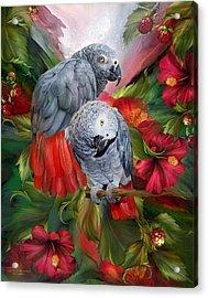 Tropic Spirits - African Greys Acrylic Print by Carol Cavalaris