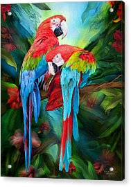 Tropic Spirits - Macaws Acrylic Print by Carol Cavalaris