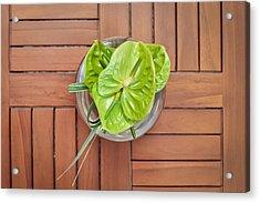 Tropical Flower Acrylic Print by Tom Gowanlock