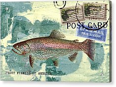 Trout Fishing In America Postcard Acrylic Print by Carol Leigh