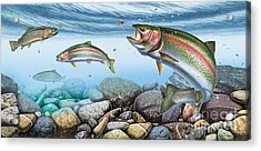 Trout Stream Acrylic Print by JQ Licensing