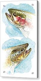 Trout Study Acrylic Print by JQ Licensing