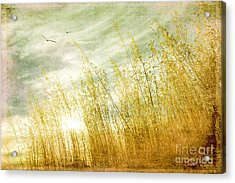 True Love Transcends Time Acrylic Print by Linda Lees