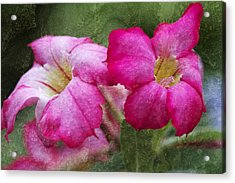 Trumpeting Nature Acrylic Print by Pamela Gail Torres
