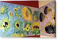 Tryptich Corner Sunflowers Acrylic Print by Vicky Tarcau