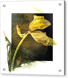 Tulip On A Textured Brown Background. Acrylic Print by Bernard Jaubert