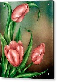 Tulip Trio Acrylic Print by Brenda Bryant