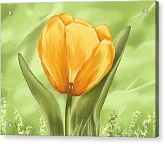 Tulip Acrylic Print by Veronica Minozzi