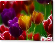 Tulips-7060-fractal Acrylic Print by Gary Gingrich Galleries